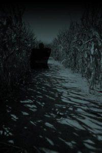 Haunted Twin Falls Corn Maze