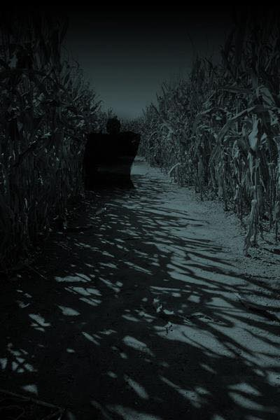 Haunted Twin Falls Corn Maze
