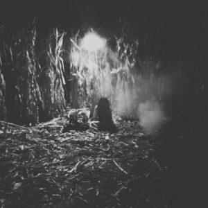 Twin Falls Haunted Corn Maze